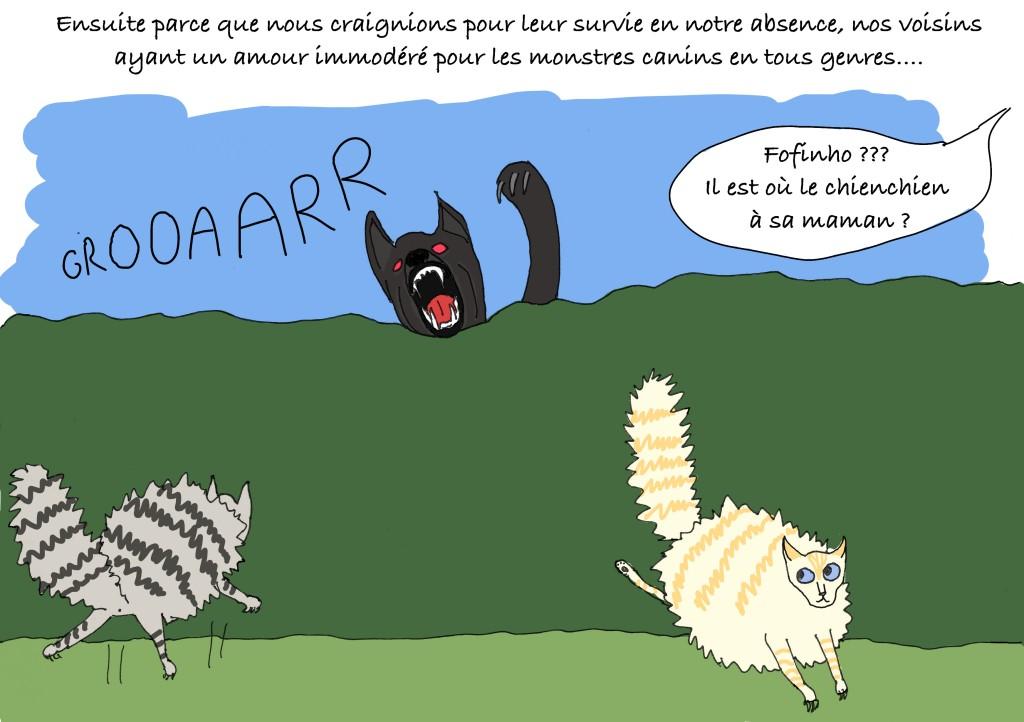 Mizou-Mizou et Le Blond fuient de peur devant le chien